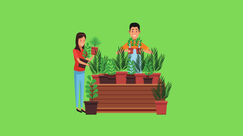 23 Cool & Useful Gardening Gadgets for Beginners to Green Thumbs